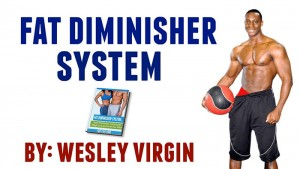 Fat Diminisher by WES
